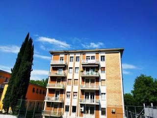 Case E Appartamenti Via Carlo Ederle Verona Immobiliareit