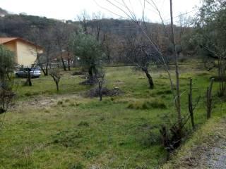 Foto - Terreno edificabile residenziale a Marano Principato