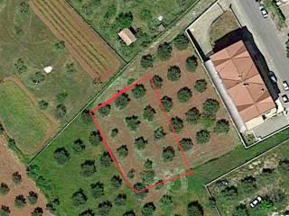 Foto - Terreno edificabile commerciale a San Lorenzo del Vallo