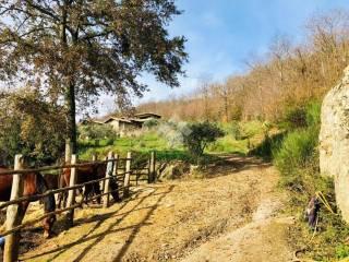 Photo - Single family villa via del monte, 8, Canale Monterano