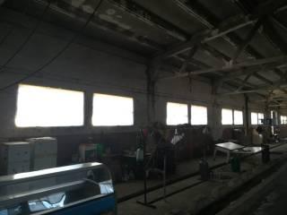 Foto - Terreno agricolo in Vendita a Sacrofano