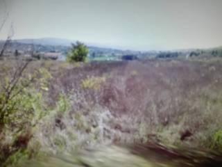 Foto - Terreno agricolo in Vendita a Campobasso