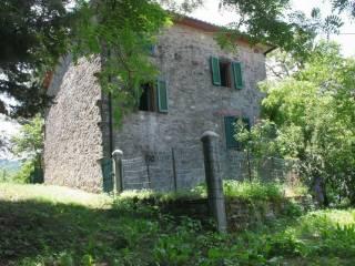Foto - Casa colonica Località Giampereta 21, Chiusi della Verna