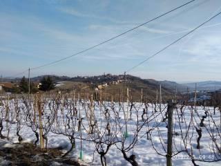 Foto - Rustico Località Montà, Mango
