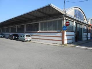 Immobile Affitto Pieve Emanuele