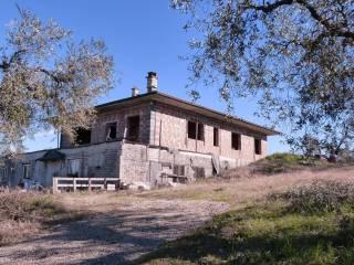 Foto - Villa unifamiliare via dei Meli, Montelibretti