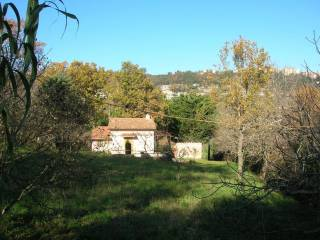 Photo - Farmhouse Strada Provinciale Santa Severa, Tolfa