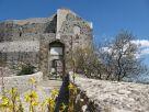 Appartamento Vendita Castel San Pietro Romano