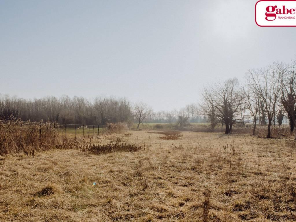 foto Terreno Terreno agricolo in Vendita a Carnate