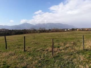 Foto - Terreno agricolo in Vendita a Frosinone