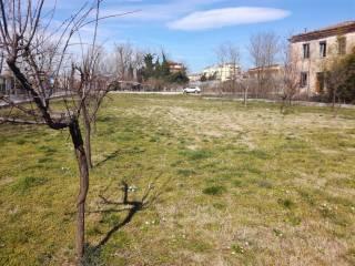 Foto - Terreno agricolo in Affitto a Frosinone