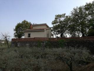 Foto - Villa unifamiliare via Fosso Agliastro I traversa, Piedimonte Etneo