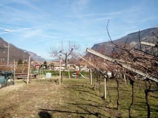 Foto - Terreno edificabile residenziale a Calliano