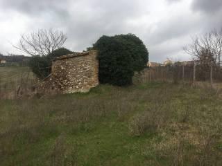 Foto - Terreno edificabile residenziale a Otricoli