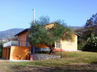 Foto - Villa unifamiliare San Bruno Melia, Joppolo