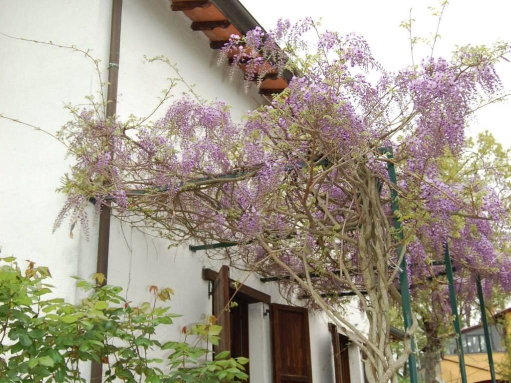 foto  Многосемейная вилла Vocabolo Candeleto, Pietralunga