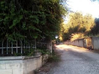 Foto - Appartamento Contrada Santa Lucia, Rodi Garganico