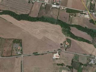 Foto - Terreno agricolo in Vendita a Termoli
