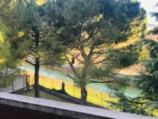 Foto - Quadrilocale via via Quarto Ponte 0, Borgo Nuovo - Navigatori, Verona