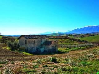 Foto - Casa colonica, da ristrutturare, 170 mq, Appignano del Tronto