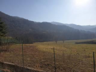 Foto - Terreno edificabile residenziale a Zandobbio