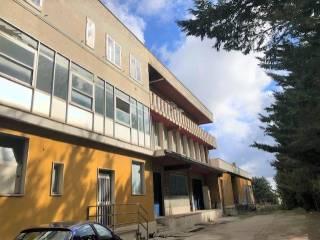 Foto - Appartamento Contrada Pesco Farese, Ripalimosani