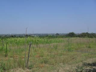Foto - Terreno agricolo in Vendita a Qualiano