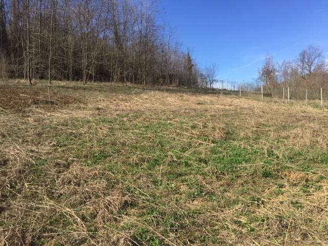 Foto 1 di Terreni Edificabili via mulino, Magliano Alfieri