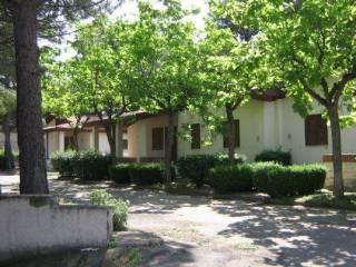 Foto - Villa a schiera 5 locali, buono stato, Orta Nova