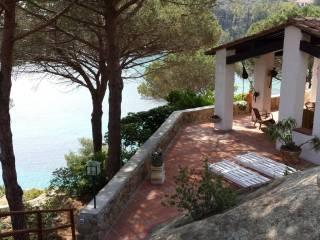 Foto - Villa unifamiliare via delle Cannelle 5, Giglio Porto, Isola del Giglio