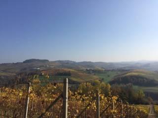 Foto - Terreno agricolo in Vendita a Narzole