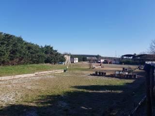 Foto - Terreno agricolo in Affitto a La Loggia