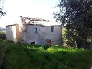 Foto - Terreno agricolo in Vendita a Rossano