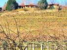 Villa Vendita Bricherasio