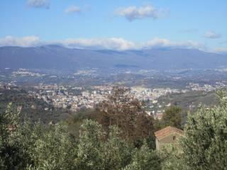 Foto - Villa a schiera Contrada Rango, Sant'Ippolito - Borgo Partenope, Cosenza
