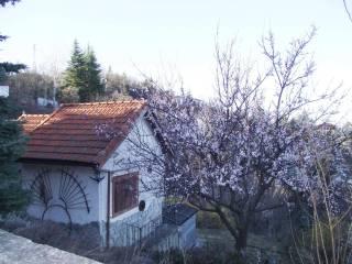 Foto - Villa unifamiliare villaggio Cascinali Losio 282, Ponzone