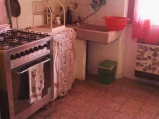 Foto - Trilocale da ristrutturare, primo piano, Querceta, Seravezza