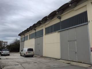 Immobile Affitto Pisa 17 - Ospedaletto
