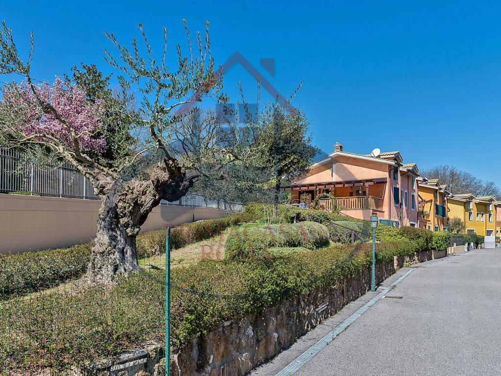 foto Borgo Villa a schiera via Antonio Varisco, Morlupo