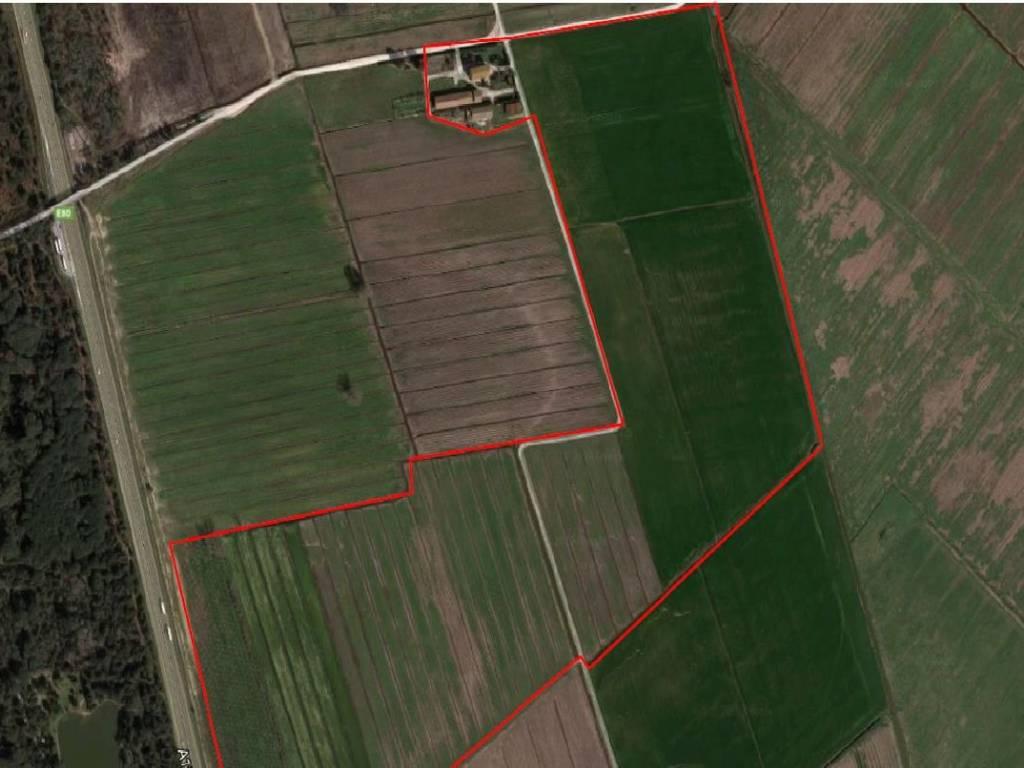 foto  Terreno agricolo in Vendita a Vecchiano