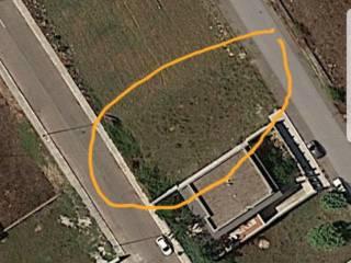 Foto - Terreno edificabile residenziale a San Pietro in Lama