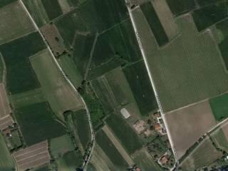 Foto - Terreno agricolo in Vendita a Cordenons