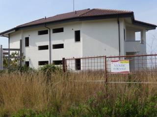 Foto - Villa bifamiliare Località Piana di Vada, Briatico