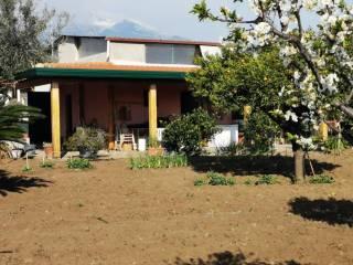 Foto - Terreno agricolo in Vendita a Riposto