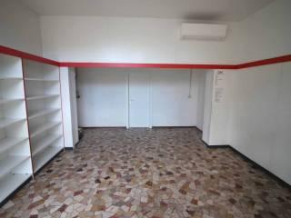 Immobile Affitto Ferrara