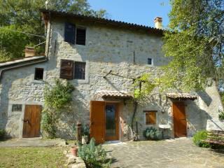 Foto - Casale via Le Serre, Monteacuto Vallese, San Benedetto Val di Sambro