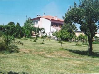 Photo - Farmhouse Località Pauli Spinarba, Simaxis