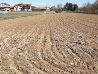 Foto - Terreno agricolo in Vendita a Santena