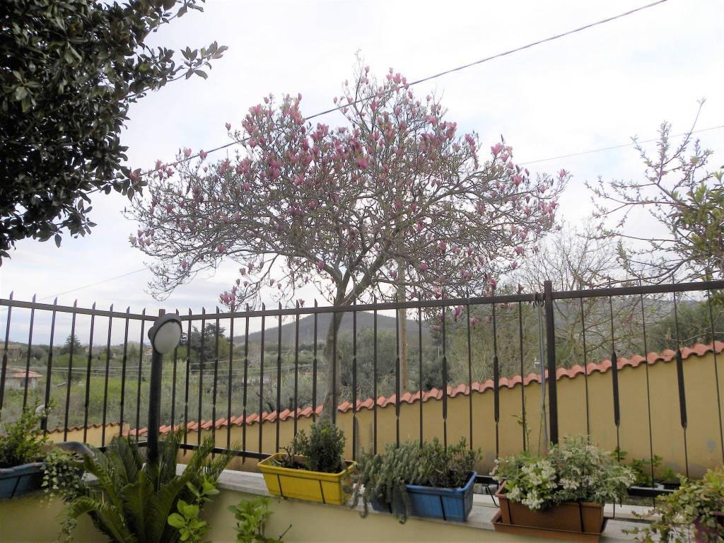 foto vista Terraced house via del Campo Sportivo, San Cesareo