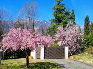 Foto - Villa unifamiliare, ottimo stato, 300 mq, Paderno del Grappa